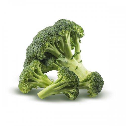 ברוקולי ירקות