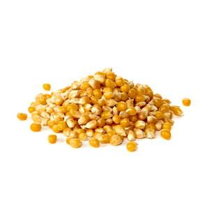 תירס יבש – 500 גרם מזווה