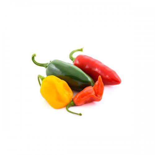 פלפלונים ירקות