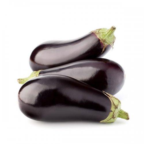חציל חממה ירקות