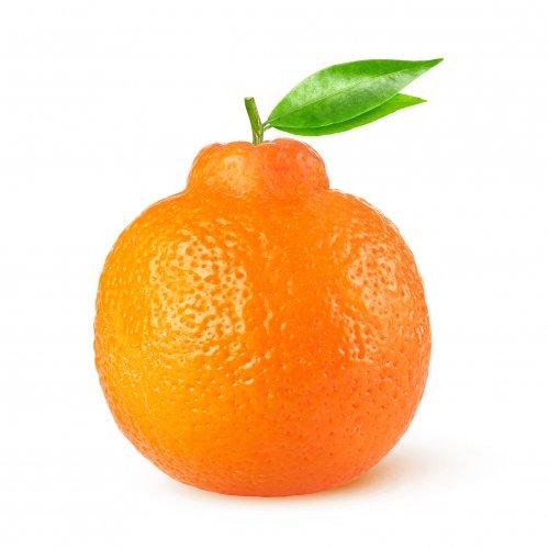 תפוזינה פירות