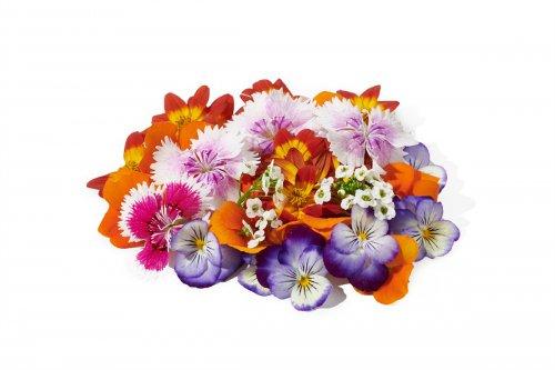 1612341645304_מיקס פרחים